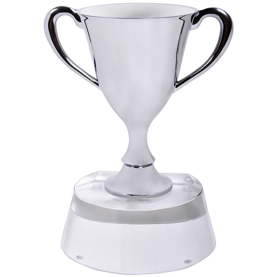 Стела «Кубок победителя» в подарочной упаковке; 13х10х17 см; стекло, металл